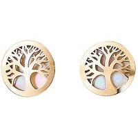 9 Carat Gold Tree Of Life Earrings