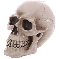 Large Gothic Realistic Skull Ornament