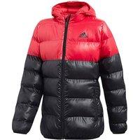 Adidas Younger Girls Jacket