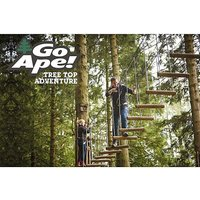 Tree Top Challenge for Two with Go Ape.