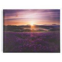 Lavender Sunset Wall Art