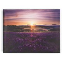 Lavender Sunset Wall Art at JD Williams Catalogue