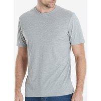 Capsule Crew Neck Grey T-shirt Regular