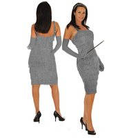 Ladies Silver 1920's Flapper Dress