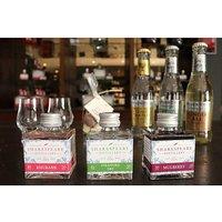 Online Tutorial Home Gin Tasting Kit.