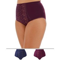 2pk Rose Embroidered Control F/fit Brief