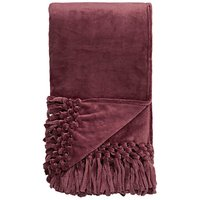 Silky Tasselled Throw