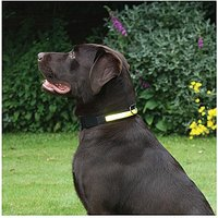 Premium Flashing Collar Yellow Small
