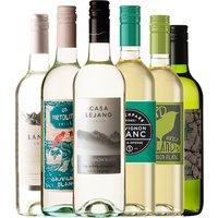 Exploring Sauvignon Blanc 6 Pack