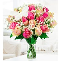 Pink Blush - Free Chocs - Free Vase - Flower Delivery - Roses Bouquet