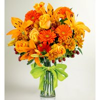 Woodbine - Banardos Flowers - Charity Flowers - Flower Delivery