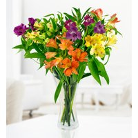 Alstroemeria Bouquet - Free Chocs - Cheap Flowers - Next Day Flowers