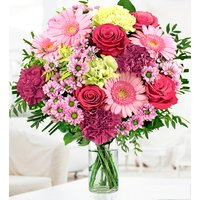 Glorious - Free Chocs - Pink Roses & Pink Gerberas - Flower Delivery