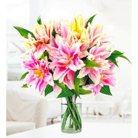 Double-Flowering 'Roselily' - Free Chocs - Lilies - Flower Delivery