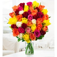40 Roses - Free Chocs - Mixed Roses Bouquet - Flower Delivery