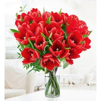 Lush Tulips - Free Chocs - Valentine's Flowers - Anniversary Flowers - Flower Delivery