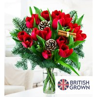 Christmas Tulips - Free Chocs
