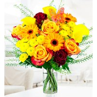 Indian Summer Bouquet - Free Chocs