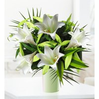 White Lilies - Free Chocs - Sympathy Flowers - Condolence Flowers - Flower Delivery - White Bouquet