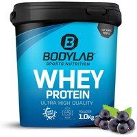 Bodylab24 Whey Protein - 1000g - Blaubeere