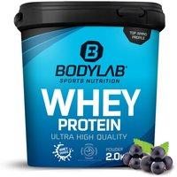 Bodylab24 Whey Protein - 2000g - Blaubeere