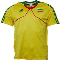 adidas-mens-ethiopia-short-sleeve-training-top-sunshine-fairway