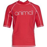 Animal Girls Molli Short Sleeve Rash Vest Petunia Pink