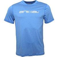 Animal Mens Latero Uv Protection T-shirt Snorkel Blue