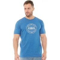 Animal Mens Tardy Graphic T-Shirt Snorkel Blue Marl