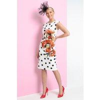 Spot Floral Print Scuba Dress