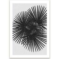 Fan Palm Black & White Art Print Unframed
