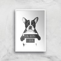 Balazs Solti Being Normal Is Boring Art Print - A2 - White Frame