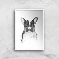 Balazs Solti Masked Bulldog Art Print - A2 - White Frame