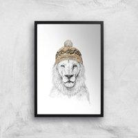 Balazs Solti Lion with Hat Art Print - A3 - Black Frame