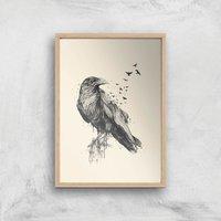 Balazs Solti Birds Flying Art Print - A3 - Wood Frame