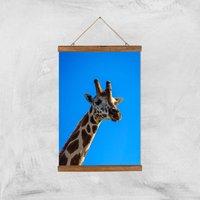 Giraffe Giclee Art Print - A3 - Wooden Hanger - Giraffe Gifts
