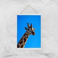 Giraffe Giclee Art Print - A3 - White Hanger - Giraffe Gifts