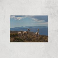 Mountain Explorers Giclee Art Print - A3 - Print Only