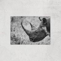 Grayscale Rhino Giclee Art Print - A4 - Print Only