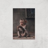Baby Monkey Giclee Art Print - A4 - Print Only - Baby Gifts