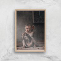 Baby Monkey Giclee Art Print - A4 - Wooden Frame - Baby Gifts