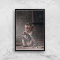 Baby Monkey Giclee Art Print - A4 - Black Frame - Baby Gifts