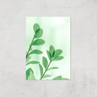 Washed Out Leaves Giclee Art Print - A2 - Print Only