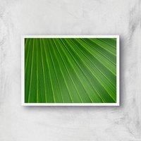 Green Sheet Giclee Art Print - A3 - White Frame
