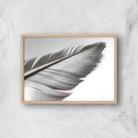 Leaf Or Feather? Giclee Art Print - A2 - Wooden Frame
