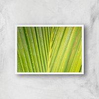 Textured Leaf Giclee Art Print - A4 - White Frame