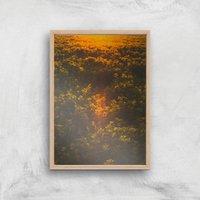 Sunset Field Giclee Art Print - A2 - Wooden Frame