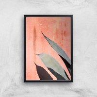 Peach Cactus Giclee Art Print - A2 - Black Frame