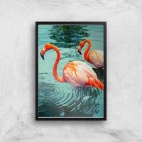 Flamingo Giclee Art Print - A2 - Black Frame - Frame Gifts