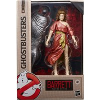 Hasbro Ghostbusters Plasma Series Dana Barrett Toy 6-Inch-Scale Collectible Classic 1984 Ghostbusters Figure - Toy Gifts
